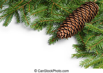 fir branches border on white background, good for christmas...