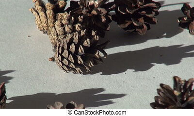 fir cone Christmas background. natural material on a sheet...