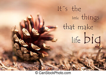 Fir Cone with Saying Its the Little Things That Make Life...