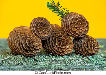Fir cones on a wooden surface with moss