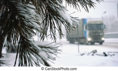 fir needles covered with snow and defocused cars on a snowed...