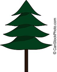 fir-tree - A evergreen conifer tree. Fir-tree. Sruce tree.