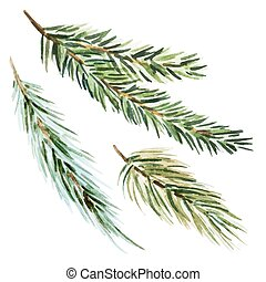 Fir-tree branch - Beautiful vector image with nice...