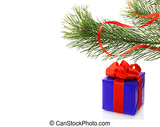 Fir tree branch with present box on white background