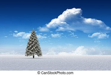 Fir tree in snowy landscape - Digitally generated fir tree...