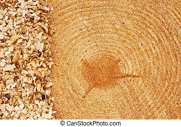 fir tree rings with sawdust - Growth rings on freshly cut...