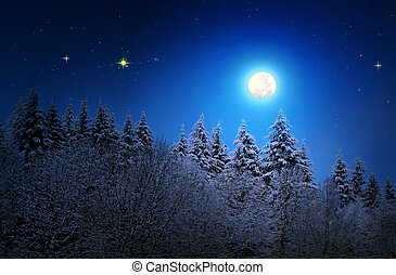 Fir trees covered with hoarfrost and full moon.