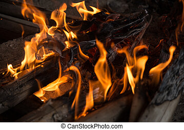 Fire and Frame with firewood 7