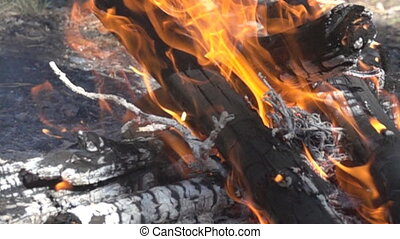 fire and the heat of fire, embers - The fire and the heat of...