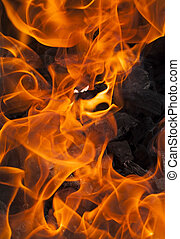 fire background - background of an orange beautiful flame in...