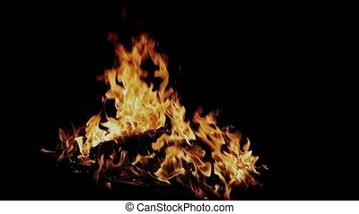 Fire burning against dark isolated background closeup footage