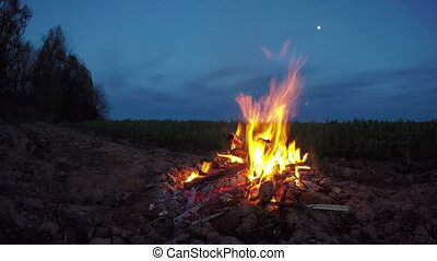 Fire burning by the field, 4K - Burning detritus in...