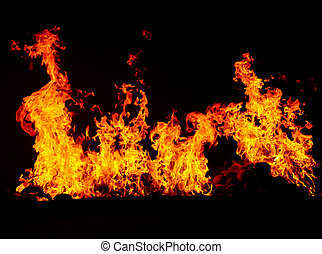 fire burning in black background