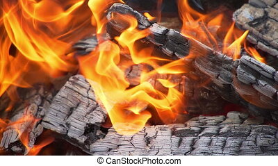 fire: burning wood and smoldering embers