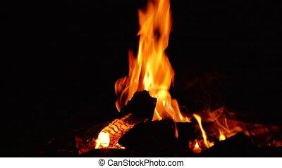 Fire burns at night in a tourist camp - Beautiful fire burns...