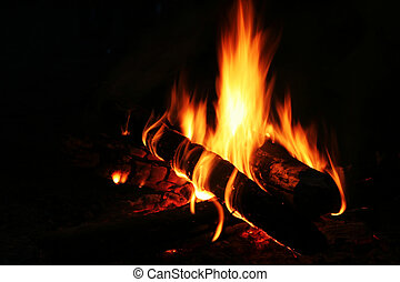 Fire - Camping fire