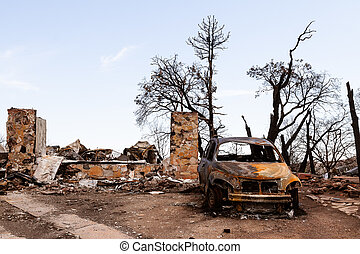 The charred remains of a house and car after a devastating forest fire