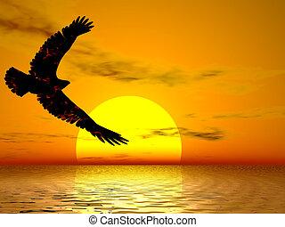 Fire Eagle Sunrise - Fire eagle soaring in a brilliant sun