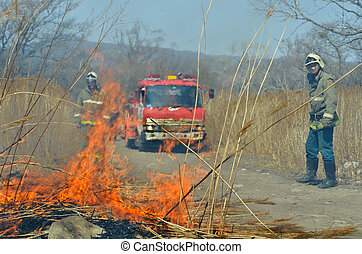 Fire-engine and firemen 2