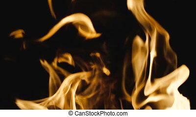 Fire. Fire from a fire