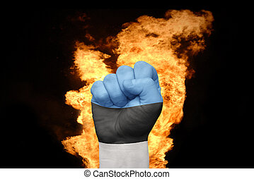 fire fist with the national flag of estonia