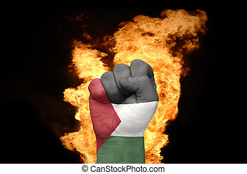 fire fist with the national flag of palestine - fist with...
