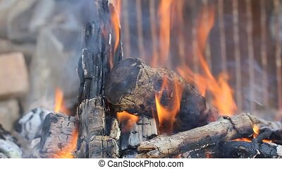 Fire flame. Burning Logs