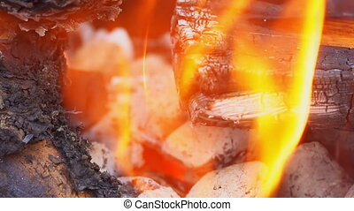 Fire flames on black background red-hot coals burning in the...