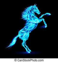 Fire horse rearing up. - Blue fire horse rearing up. ...