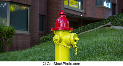 Fire hydrant on a lawn in front of brick building