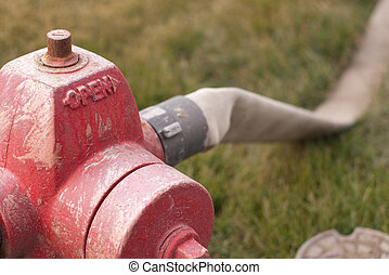 fire hydrant with hose