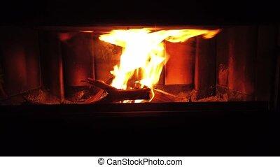 Fire in fireplace. hd video footage