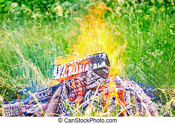 fire in nature