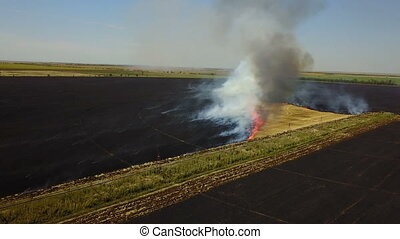 Fire in the field with stubble - Fire in a field with ...