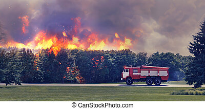 Fire in the forest - Fire-engine is in hurry to extinguish...