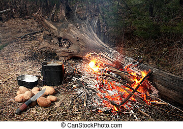 Fire in wood. Near to fire a kettle, a knife and a potato.