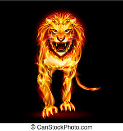 Fire lion - Illustration of fire lion isolated on black...