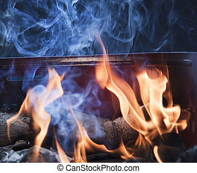 Fire of a barbecue