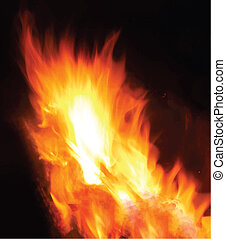 fire on a black background, vector