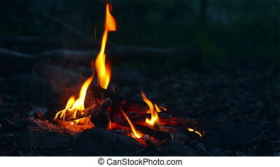Fire on a Camping Trip in the Twili