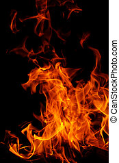 fire on black background - red flames of fire as red black...