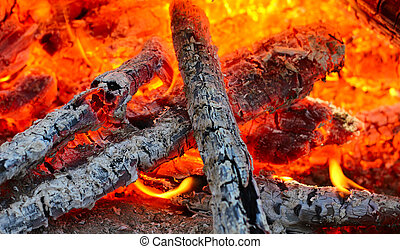 Fire on coal