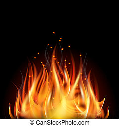 Fire on dark background. - Burning fire flame on black...