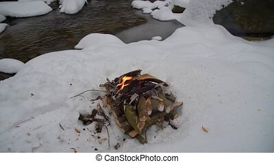 Fire on the snow in forest - Fire on the snow near the...