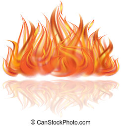 Fire on white background.