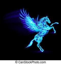 Fire Pegasus. - Blue fire Pegasus rearing up. Illustration ...