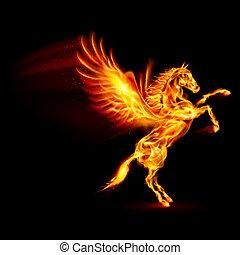 Fire Pegasus. - Fire Pegasus rearing up. Illustration on ...