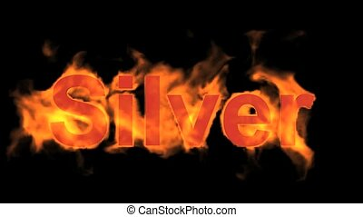 fire silver word, flame text.