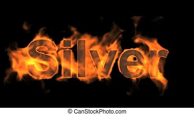 fire silver word,flame text.80:silv