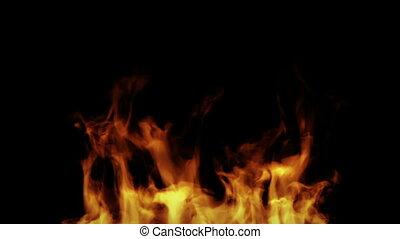 Fire - Burning fire. High qualty HD video.